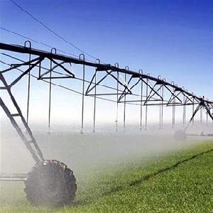 Аграрная цифровизация
