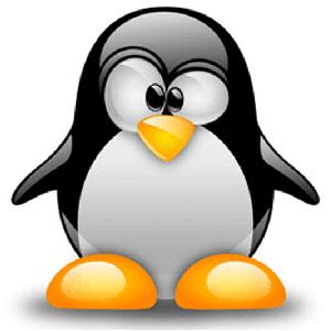Объявлен набор на курс по Linux