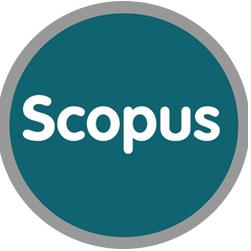 Открыт доступ к базам данных Scopus