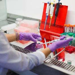 Начат прием заявок на конкурс по поддержке генетических исследований