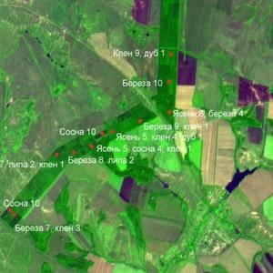Ученые Самарского университета создают интернет-сервис оценки экологического состояния территории