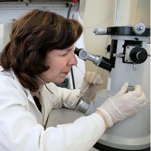 Новые искусственные материалы упростят биохимические анализы