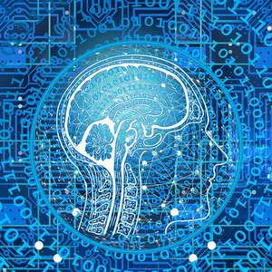 Ученые Самарского университета создали доступный всему миру программный комплекс для исследований в области мозга