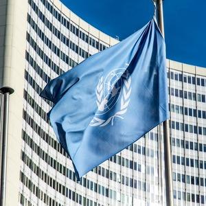 Университет принял участие в работе сессии Комитета ООН