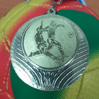 Кубок по мини-футболу