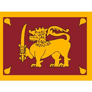 Правительство Шри-Ланки выделяет стипендии российским студентам