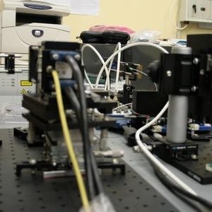 На базе СГАУ и СамГМУ создаётся научно-исследовательская лаборатория тканевой инженерии
