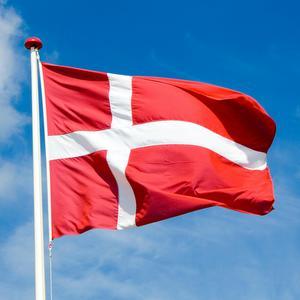 Дания приглашает на стажировку