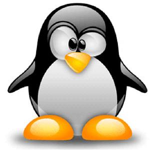 Слушателей приглашают на курс лекций «Linux для прикладных задач»